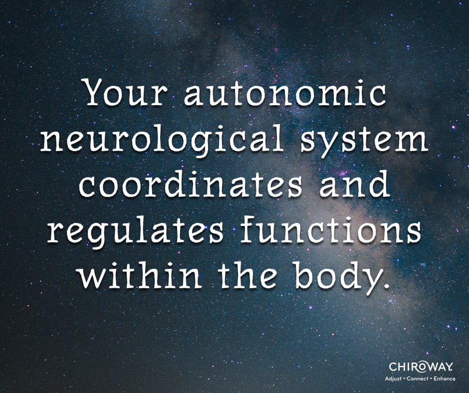 Your autonomic neurological system coordinates and regulates functions within the body