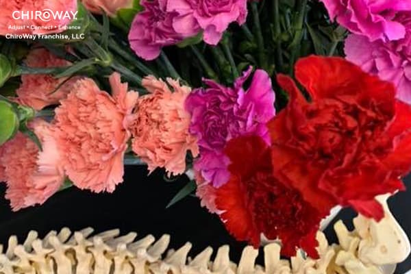 Red and Pink Carnations