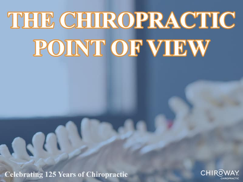 The Chiropractic Point of View