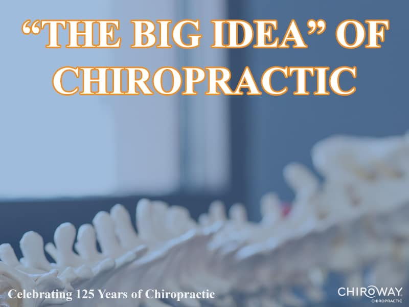 """The Big Idea"" of Chiropractic"