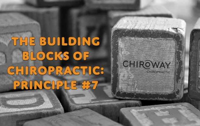 Building Blocks of Chiropractic: Principle 7