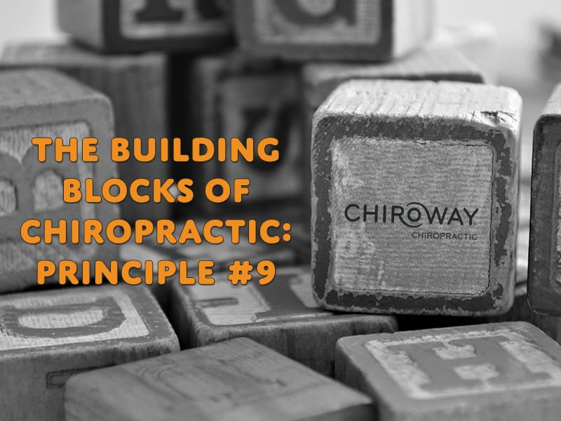 ChiroWay Franchise Chiropractic Principle 9