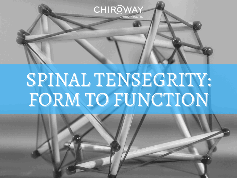 Spinal Tensegrity: Form to Function