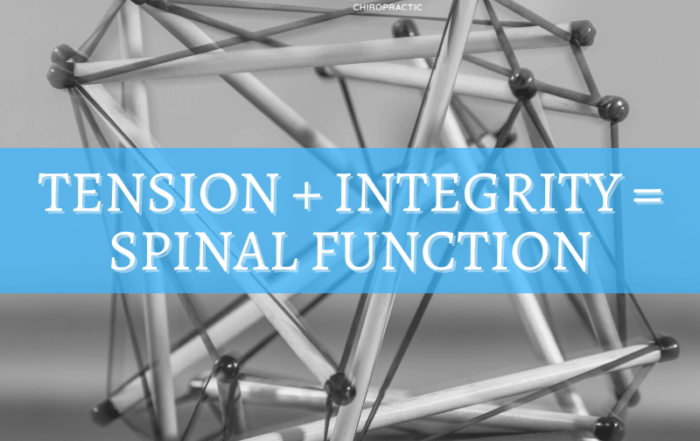Tension + Integrity = Spinal Function