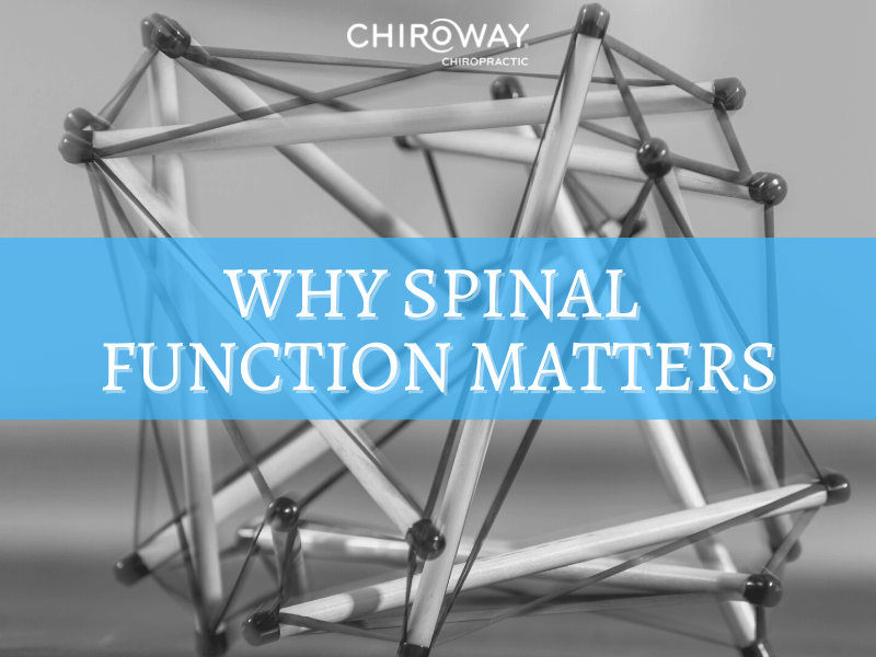 Why Spinal Function Matters